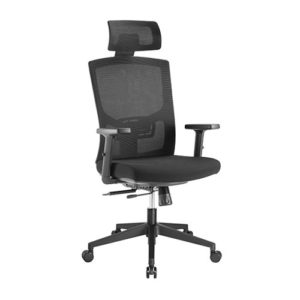 Brateck Ergonomic Mesh Office Chair with Headrest (655x675x1165-1265mm) Up to 150kg - Mesh Fabric
